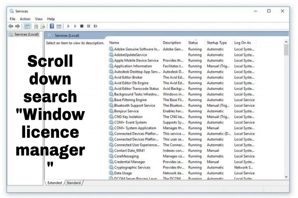 search window licence manager